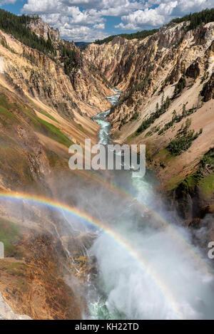 Il grand canyon del Parco Nazionale di Yellowstone Foto Stock