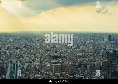 Vista sulla tokyo, Giappone dal quarantacinquesimo (202m) piano del governo metropolitano di edificio. Che cosa Foto Stock