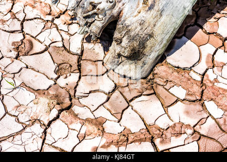 Macro closeup di rosso terreno essiccati letto con crepe di fango, log in legno, argilla mostra pattern e texture nel deserto