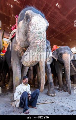 Un mahout prendendo un resto di fronte al suo elefante, Amber Fort Jaipur, Rajasthan, India Foto Stock