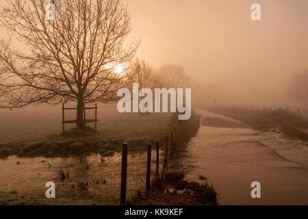 Un freddo gelido e gelido nebbiosa mattina presto a Ickham come il sole sorge, ghiaccio dalla Ford freezez sulla Foto Stock