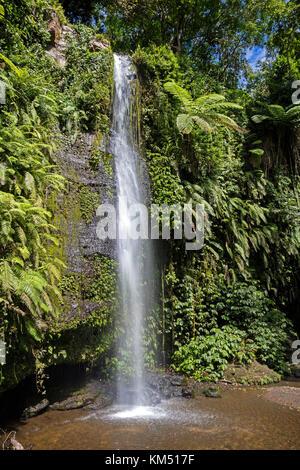 Benang kelambu cascate nella foresta tropicale vicino al villaggio di aik berik, nord batukliang, central lombok, Foto Stock