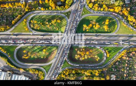Autostrada intersezione Kleeblatt, A40 e A59 per Rush Hour, ingorgo sull'A40 nei pressi di Duisburg, Kleingärten, Foto Stock