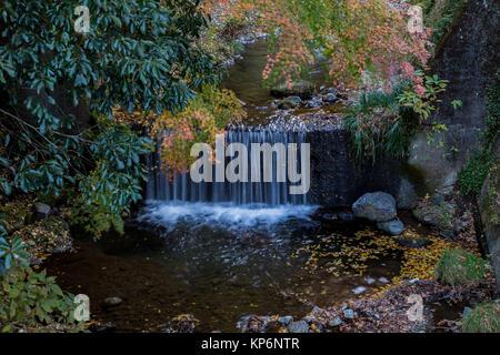 Una piccola cascata in un torrente di montagna sul lato di Oyama, una montagna sacra vicino a Isehara, Kanagawa, Foto Stock