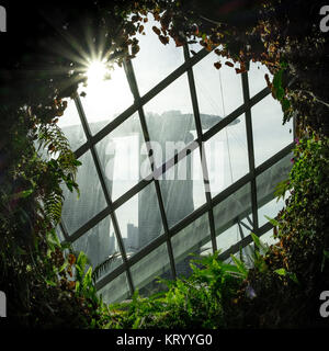 Il Marina Bay Sands visto dal Cloud Forest con raggiera Foto Stock