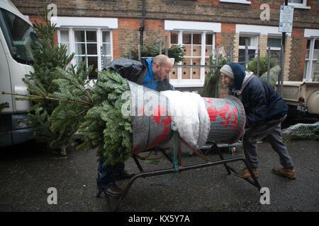 Londra, Inghilterra - dicembre 18 , 2017 alberi di Natale in vendita presso la Columbia Road flower market in Bethnal Foto Stock