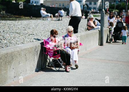 Due anziane signore godendo il buon tempo leggendo i giornali sul lungomare di Bray County Wicklow Irlanda Foto Stock