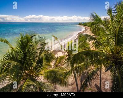 Francia,caraibi,Piccole Antille,Guadalupa,Grande-Terre,Le Gosier,vista aerea sulla spiaggia di Salines (vista aerea) Foto Stock
