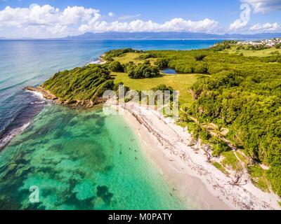 Francia,caraibi,Piccole Antille,Guadalupa,Grande-Terre,Le Gosier,vista aerea sulla spiaggia di Saint Félix,mangrove Foto Stock