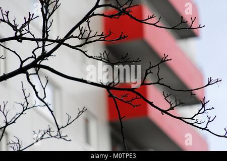 Vecchio rosso weathered balconi sulla facciata di un brutto edificio alto , i rami in primo piano