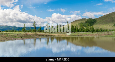 Stagno di acqua e di abeti in White Lake National Park, Tariat distretto, Nord provincia Hangay, Mongolia, Asia Foto Stock
