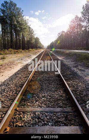 Lungo rettilineo di svuotare i binari ferroviari scomparendo in lontananza. Foto Stock