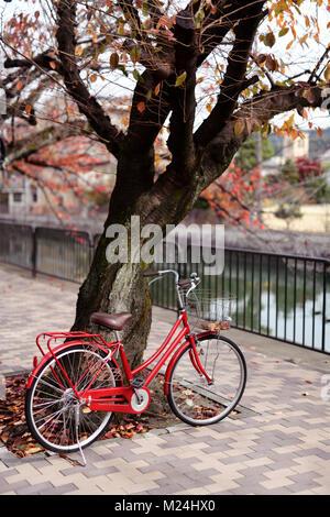 Red womens city bicicletta parcheggiata in corrispondenza di un albero ciliegio da un fiume in autunno su una strada Foto Stock