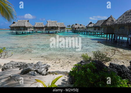 Tropical Island Resort con bungalows su stilt in laguna, Tikehau Atoll, Tuamotus, Polinesia francese, oceano pacifico, Oceania