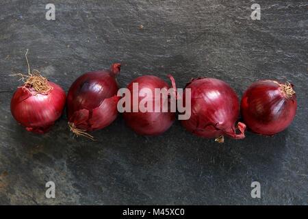Le cipolle rosse in una linea di ardesia scura del tavolo