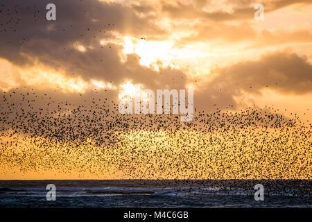 Aberystwyth Wales UK, giovedì 15 Feb 2018 UK Meteo: Al tramonto in un freddo e ventilato febbraio sera a Aberystwyth, Foto Stock