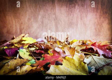 Caduta foglie su sfondo di legno. Colori d'autunno Foto Stock