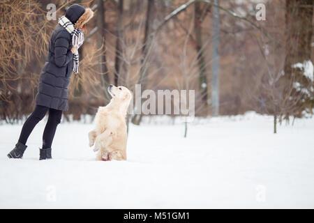 Immagine della giovane donna in giacca nera del cane di formazione nel parco innevato Foto Stock