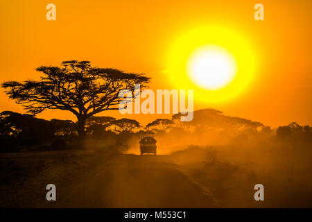 Jeep safari guidando attraverso la savana al tramonto Foto Stock