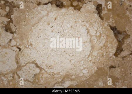 Marmo texture astratta. Reale e naturale fino in prossimità della roccia di pattern. Colore: giallo. Foto Stock