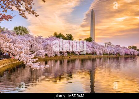 Washington DC, Stati Uniti d'America nella stagione primaverile. Foto Stock