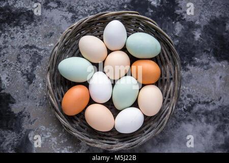 Differenti uova, bianco, marrone, marrone chiaro e verde uova Foto Stock