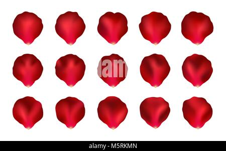 Set di Red petali di rosa, Mesh. Raccolta di vettore di petali di rosa isolato su uno sfondo bianco. Per il vostro Foto Stock