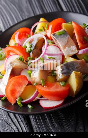 Insalata fresca di sgombro con carofel, Rafano, cipolla e pomodoro close-up su una piastra verticale. Foto Stock