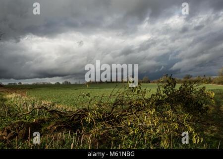 Campo allagato vicino Chacombe sulla giornata di sole con nuvole di tempesta Foto Stock