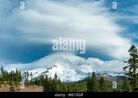 Nube lenticolare, Mount Shasta, Shasta-Trinity National Forest, California Foto Stock