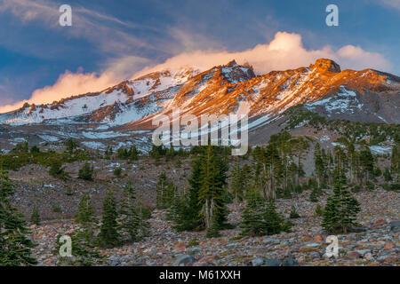 Mount Shasta, Panther Prato, Shasta-Trinity National Forest, California Foto Stock