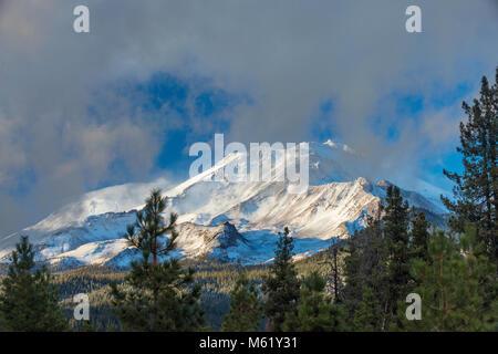 Mount Shasta, Shastina, Shasta-Trinity National Forest, California Foto Stock