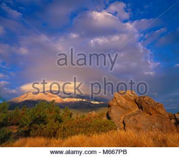 Nube lenticolare, Shastina, Mount Shasta, Shasta-Trinity National Forest, California Foto Stock
