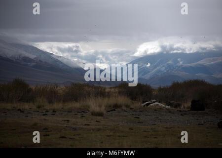Il vasto deserto delle montagne di Altai in Mongolia occidentale è a casa per il kazako nomadi. Foto Stock