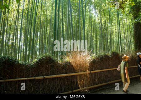 I turisti giapponesi a piedi la foresta di bamboo ad Arashiyama a Kyoto, Giappone Foto Stock