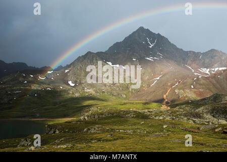 Corno dei Tre Signori con arcobaleno, visto dal Passo Gavia, Lombardia, Italia Foto Stock