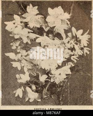 Dreer all'ingrosso Listino prezzi - Henry A. Dreer. (21052248212) Foto Stock