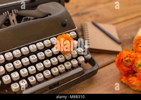 La scrittura nella primavera del concetto. Closeup shot di retro nastri inchiostratori per macchine da scrivere, Foto Stock