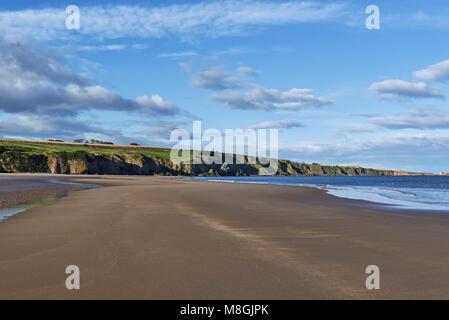 La spiaggia vuota a San Ciro Riserva Naturale Nazionale in Aberdeenshire, su un bel pomeriggio autunnale con la Foto Stock