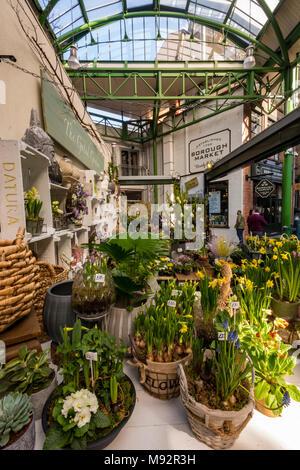 Un fiore bancarella vendendo appena tagliato fiori di primavera a Borough Market nel centro di Londra. Freschi e di stagione primavera narcisi e primule in vendita. Foto Stock