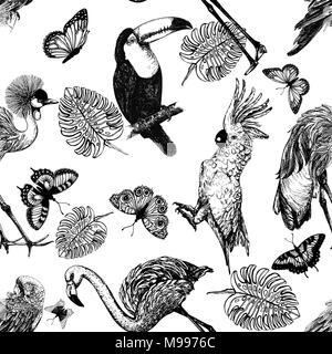 Modello senza giunture di mano il bozzetto di stile uccelli esotici, piante e farfalle isolati su sfondo bianco. Illustrazione Vettoriale. Foto Stock