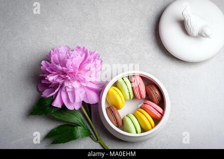 Fiore peonia, amaretti su sfondo grigio. Buon compleanno, annivarsary, Valentino vacanze concept Foto Stock