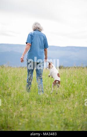 Un sincero ritratto di una femmina senior a piedi in un campo di erba alta con il suo piccolo cane jumping accanto a. Foto Stock