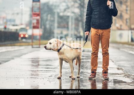 Fosche previsioni in città. L'uomo con il suo cane (labrador retriever) camminando sotto la pioggia sulla strada. Praga, Repubblica Ceca. Foto Stock