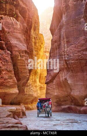 Carrozza a cavallo attraverso il Siq Canyon al tesoro, Petra, Giordania Foto Stock
