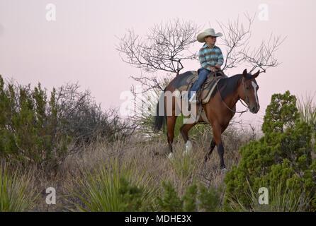 Giovani cowgirl cercando di bovini vaganti su un West Texas ranch Foto Stock
