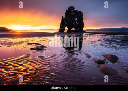 È una spettacolare roccia nel mare sulla costa settentrionale dell'Islanda. Leggende dicono che è un troll pietrificato. Su questa foto Hvitserkur riflette in acqua di mare dopo il tramonto di mezzanotte Foto Stock