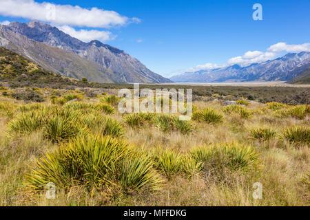 Parco nazionale di Mount Cook vista dal percorso del ghiacciaio tasman'Isola Sud della Nuova Zelanda zealandnew nuova zelanda isola del sud della Nuova Zelanda Foto Stock