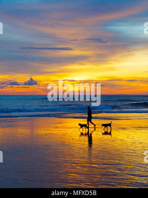 Silhouette di un uomo a piedi con i cani sulla spiaggia al tramonto. Isola di Bali, Indonesia Foto Stock