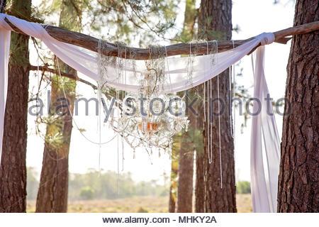 Lampadario Allaperto : Tessuto drappeggiato tra alberi e un lampadario di cristallo fare un